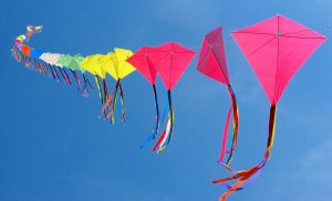 Come Fly A Kite Day - Lakeway City Park 25th Anniversary @ Lakeway City Park